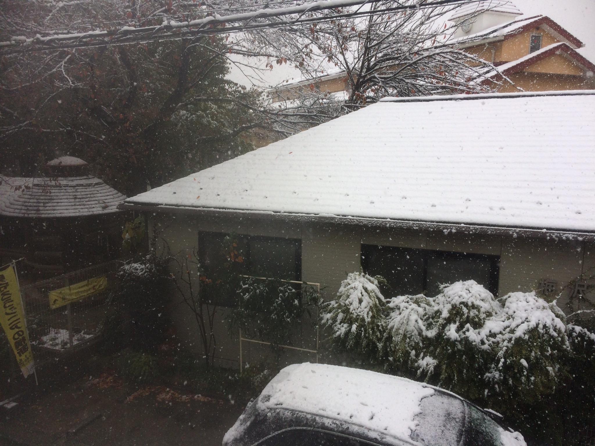なんと11月なのに、雪が積もってる